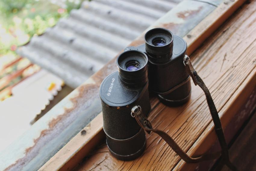 5 вещей недели: неделя 19, август | Slow Life Blog