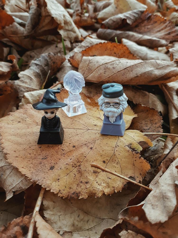 5 вещей недели: неделя 28, октябрь | Slow Life Blog
