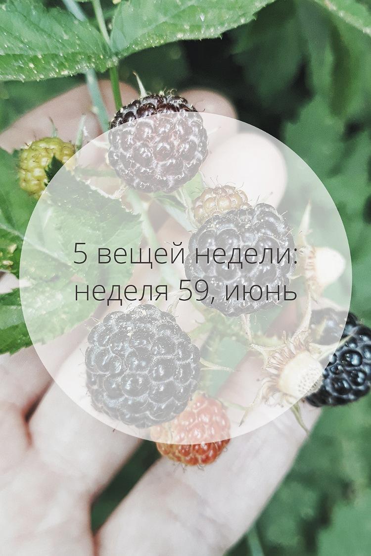 5 вещей недели: неделя 59, июнь | Slow Life Blog