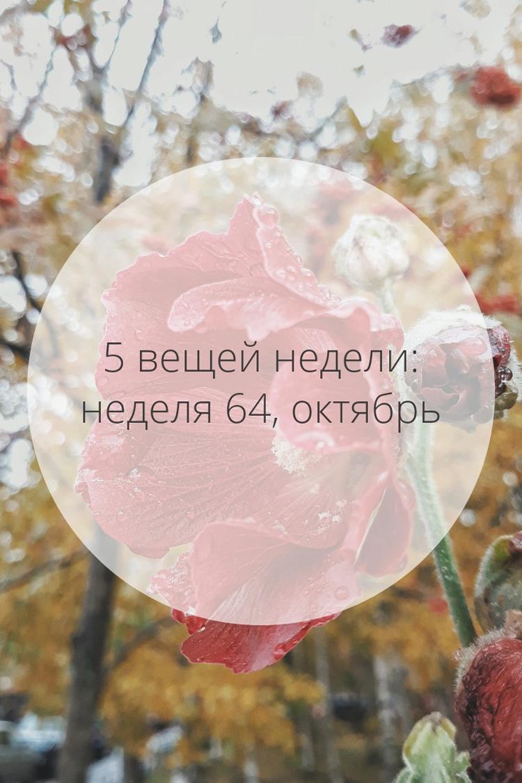 5 вещей недели: неделя 64, октябрь | Slow Life Blog